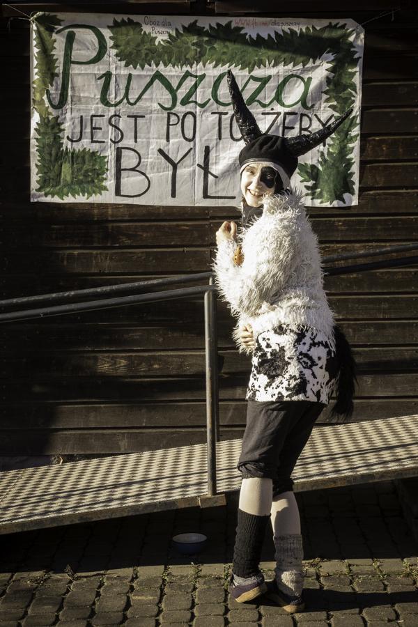 Krowa (Kinga Karp) pod budynkiem starej szkoły w Teremiskach na tle napisu Puszcza jest po to, żeby była.